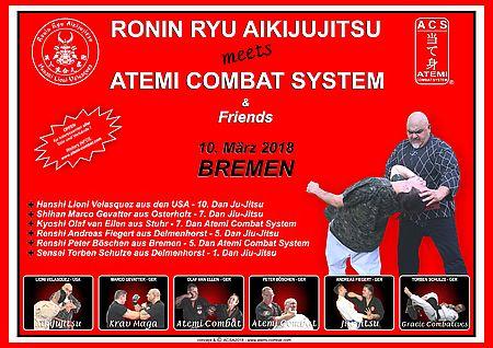 2018 03 10. ronin ryu atemi combat